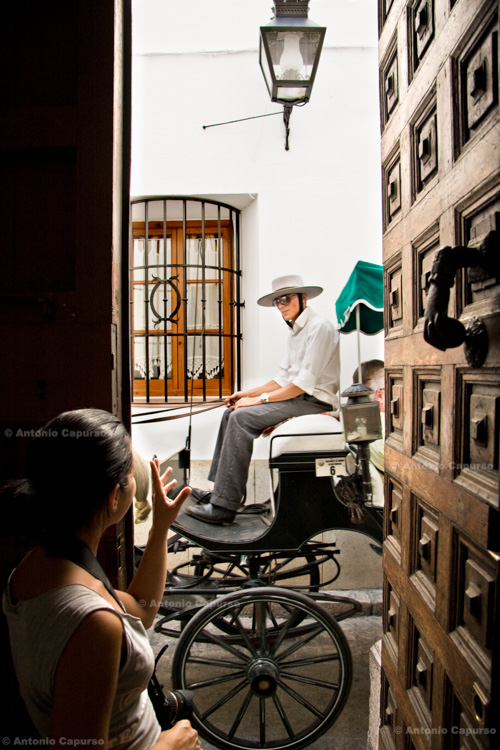 Cordoba - Tourist carriage