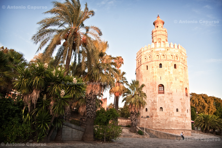 Seville - Torre del Oro