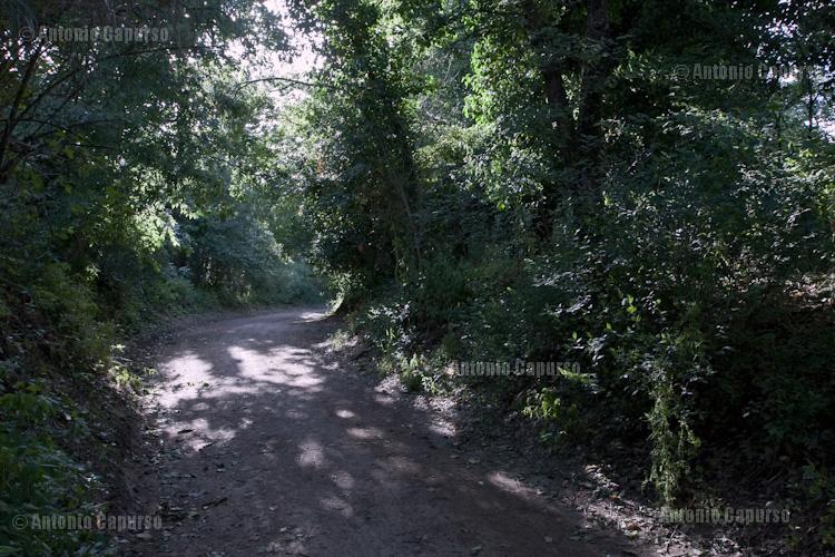 Parco della Caffarella - Maggio 2013