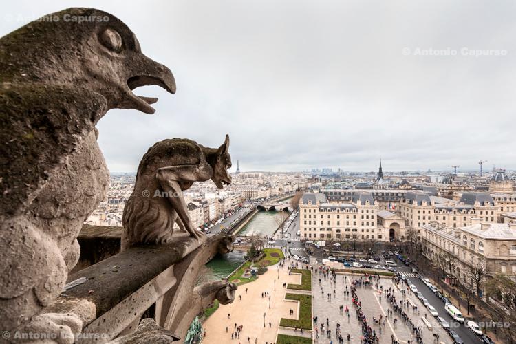 Cathedrale Notre-Dame de Paris - Paris, France (2016)