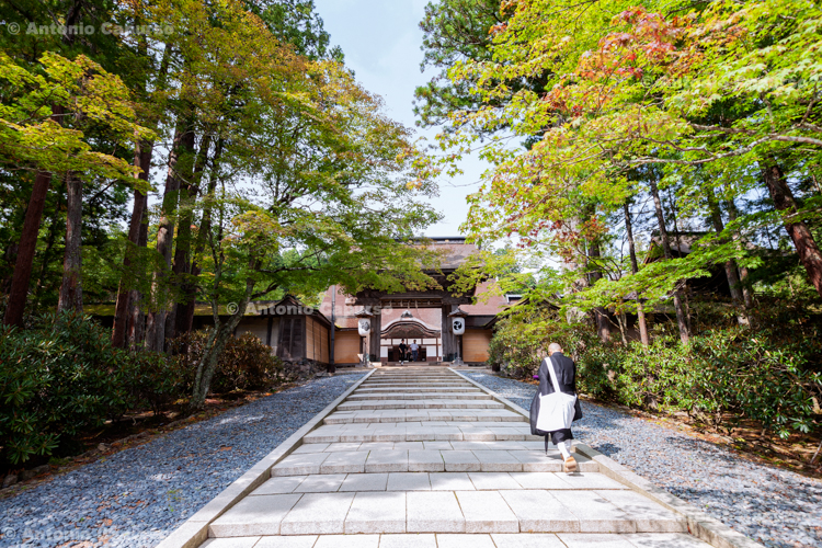 Okunoin Cemetery (4), Mount Koya, Japan (2018)