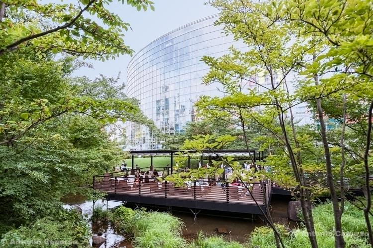 Roppongi Hills - Tokyo, Japan (2018)