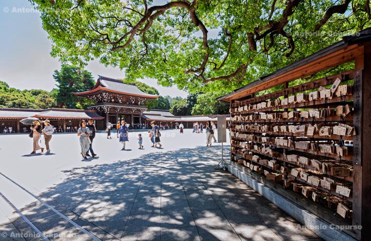 Inscribed wooden plates at the Meiji Jingu Shrine in Shibuya - Tokyo, Japan (2018)