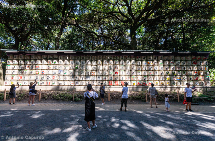 Sake barrels in the Meiji Jingu Shrine in Shibuya - Tokyo, Japan (2018)