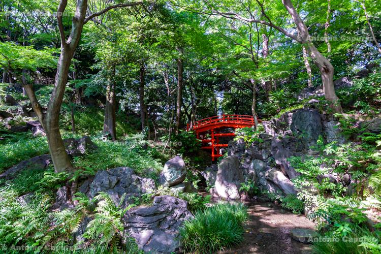 Koishikawa-Kōrakuen garden in Koishikawa - Tokyo, Japan (2018)