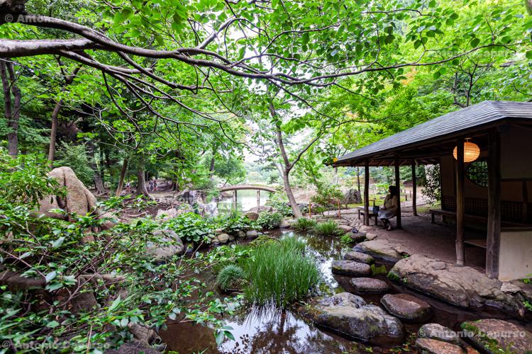 Rikugi-en Gardens in Bunkyō-ku - Tokyo, Japan (2018)