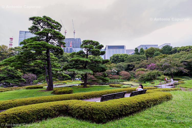 Shinjuku Gyoen National Garden in Shibuya - Tokyo, Japan (2018)