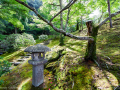 Gyoen National Garden - Kyoto, Japan (2018)