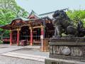 Main shrine building of Nezu-jinja Shrine in Bunkyō - Tokyo, Japan (2018)