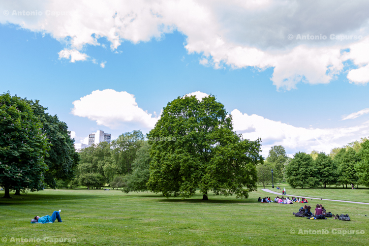 Green Park - London, May 2014