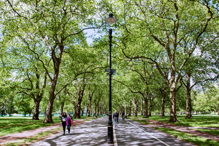 Hyde Park - London, May 2014