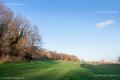 Alexandra Park, Autumnal View - North London, 2020