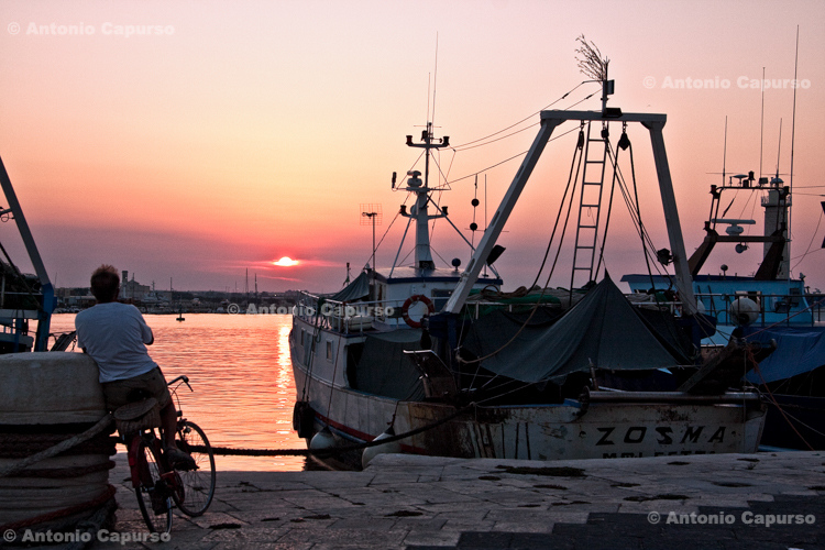 Contemplating at the harbour - Molfetta, Italy