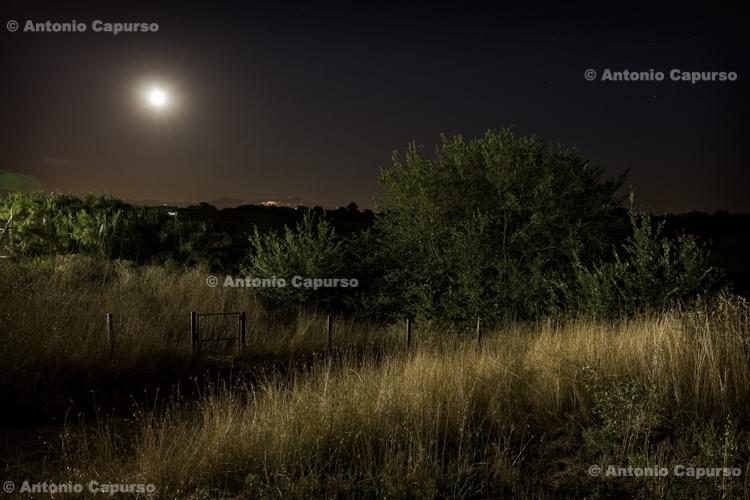 Parco della Caffarella at night, Rome - August 2012