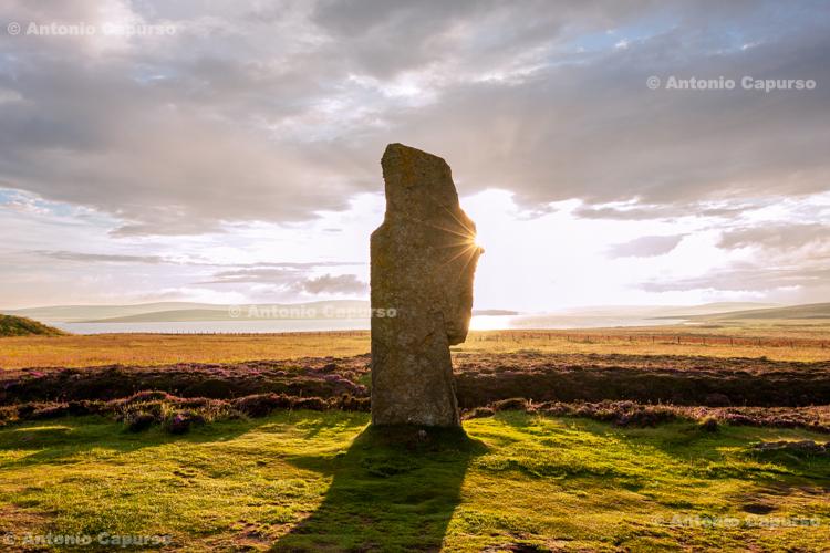 Menhir in The Ring of Brodgar - Orkney Islands, mainland - Scotland - UK, 2012