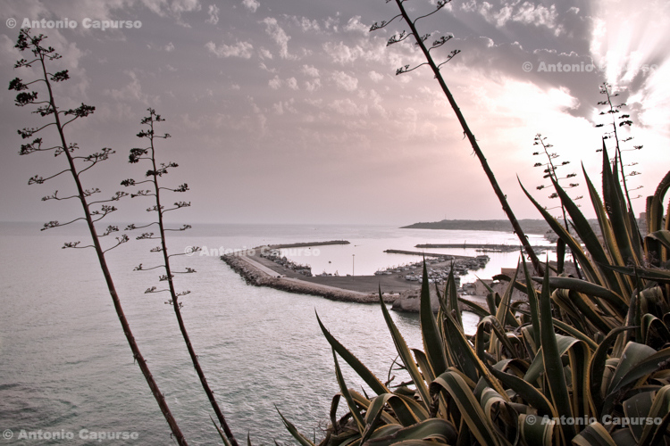 View of Sciacca and its harbour - Sicily, Italy - August 2010