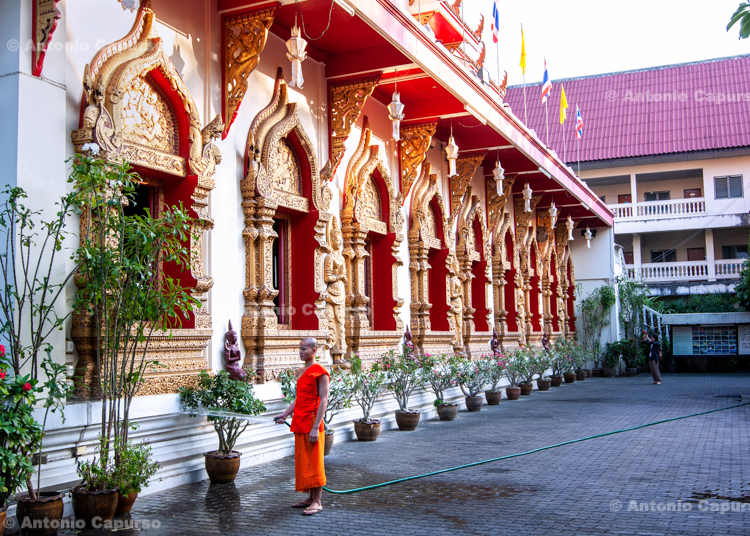 Young buddhist monk at Wat Phra Singh in Chiang Mai - Thailand, 2013