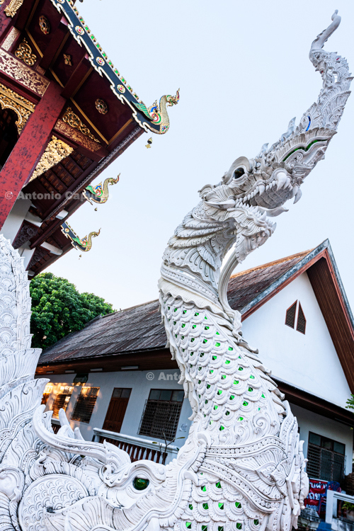 Dragon sculpture at the entrance of a temple in Wat Phra Singh - Chiang Mai - Thailand, 2013