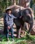 Elephant camp near Chiang Mai - Thailand, 2013