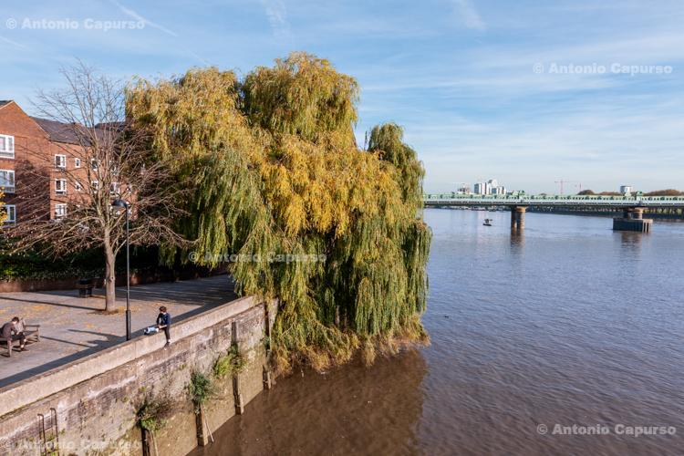 View from Twickenham Bridge, Twickenham - West London, September 2015