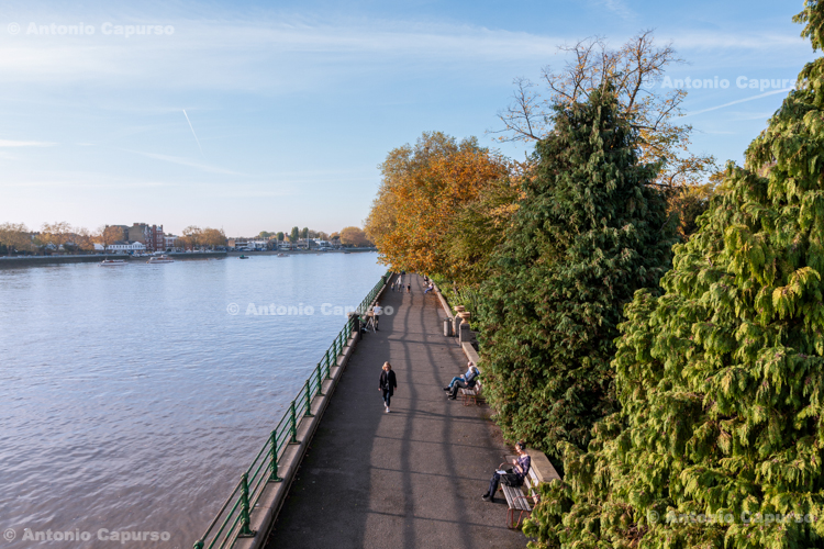 Thames Path in Putney, London - October 2015