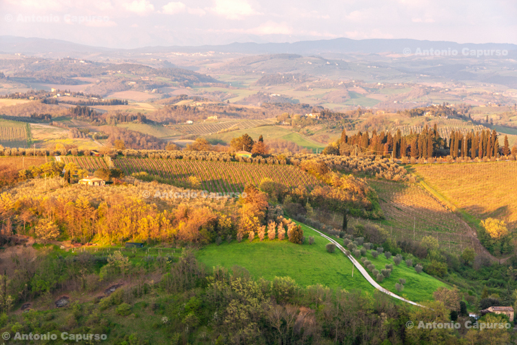 Tuscany countryside near San Gimignano - Tuscany - Italy, April 2010