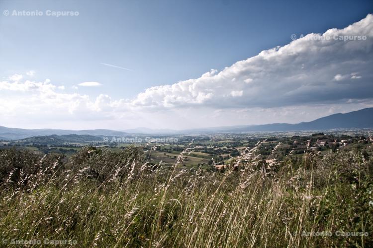 Countryside near Montefalco, Umbria - Italy, May 2010